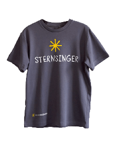 Sternsinger-T-Shirt in Grau
